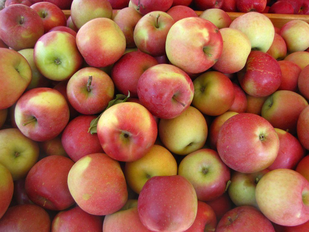 Как правильно хранить яблоки на зиму