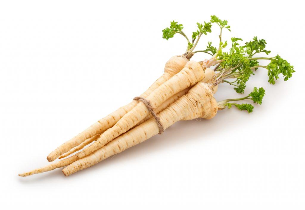 Пастернак овощ выращивание и уход