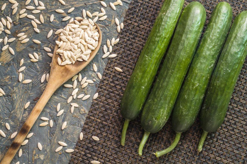 Семена ранних огурцов для теплицы