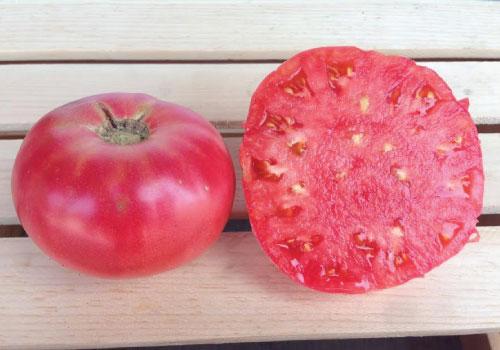 Ляна томат фото